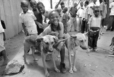 Kinder spielen mit möglicherweise infizierten Hunden; Bildquelle: MSD Animal Health