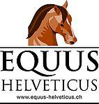 8. Equus helveticus