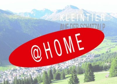 KLEINTIER DAVOS 2021@home