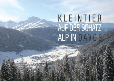 KLEINTIER Davos 2017