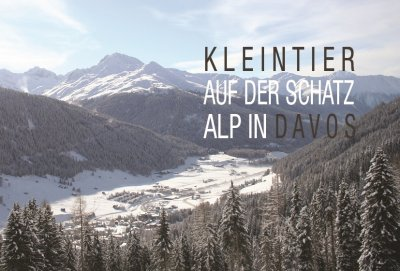 KLEINTIER Davos